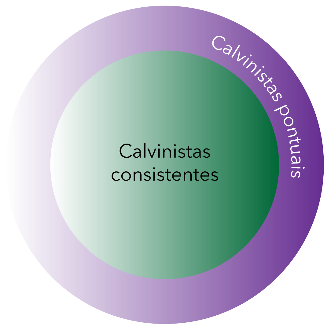 Calvinistas consistentes